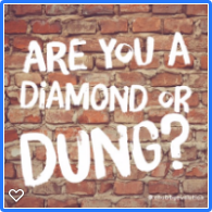 diamond or dung
